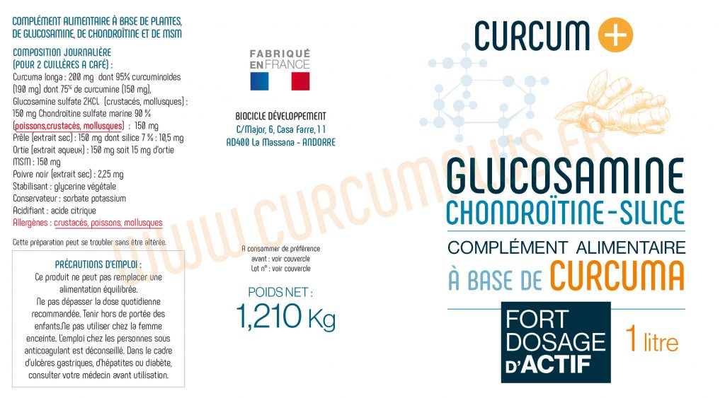 GLUCO CHONDRO CURCUM+ composition